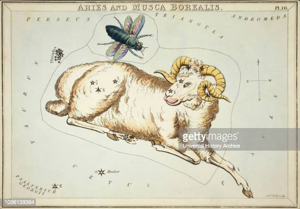 Aries and Musca Borealis Card Number 16 from Urania's Mirror or A View of the Heavens one of a set of 32 astronomical star chart cards engraved by...