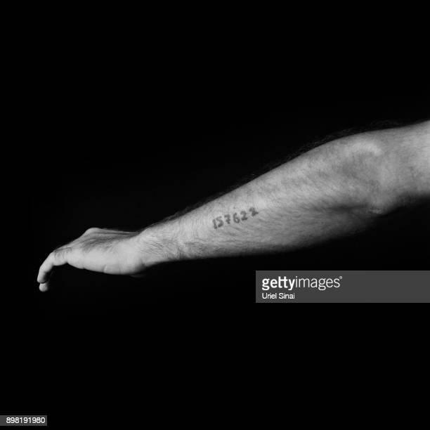 157622 Arik Diamnt grandson of Auschwitz survivor Yosef Diamnt is photographed on September 04 2012 in Bnei Zion Israel Yosef was tattooed with from...