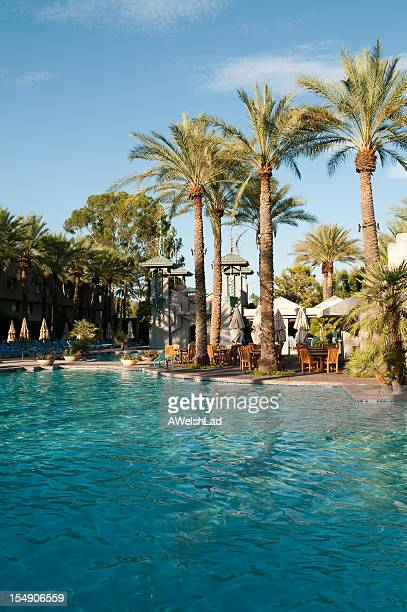 arizona biltmore hotel swimming pool at noon with palm trees - biltmore hotel stock photos and pictures