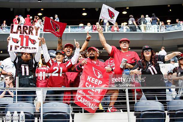 Arizona Cardinals fans celebrate their win after the NFL football game between the Arizona Cardinals and the Dallas Cowboys at AT&T Stadium in...