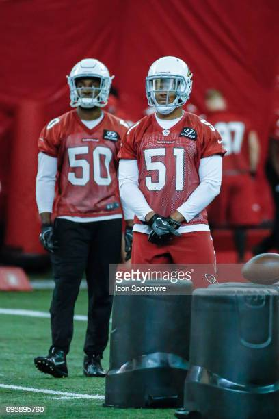 free shipping 60987 62405 30 Top Tre' Johnson Nfl Pictures, Photos, & Images - Getty ...