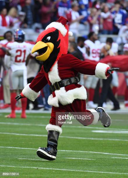 Arizona Cardinals mascot Big Red runs onto the field prior to a game against the New York Giants at University of Phoenix Stadium on December 24 2017...