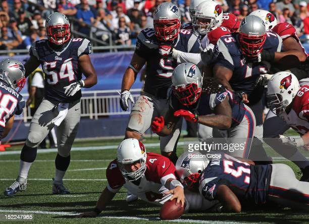 Arizona Cardinals quarterback Kevin Kolb goes up the middle and into the end zone for a 5-yard touchdown in the fourth quarter as the New England...