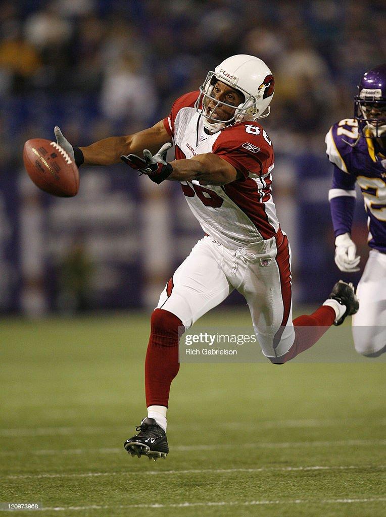 Arizona Cardinals vs Minnesota Vikings - November 26, 2006