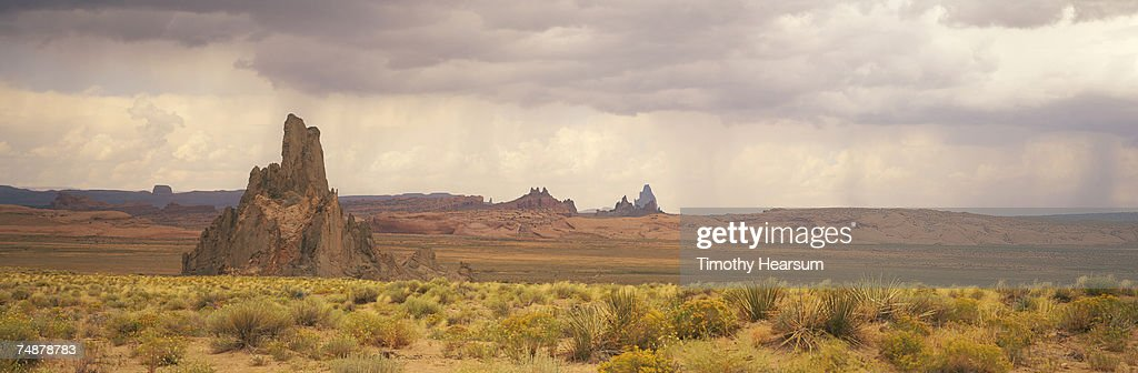 USA, Arizona, Church Rock, near Kayenta, rock formations and wild flowers : Stock Photo