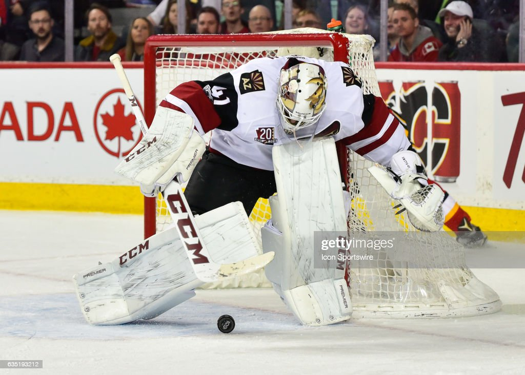 NHL: FEB 13 Coyotes at Flames : News Photo