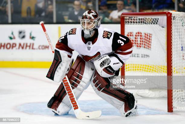 Arizona Coyotes goalie Scott Wedgewood gets set for a shot during a game between the Boston Bruins and the Phoenix Coyotes on December 7 at TD Garden...