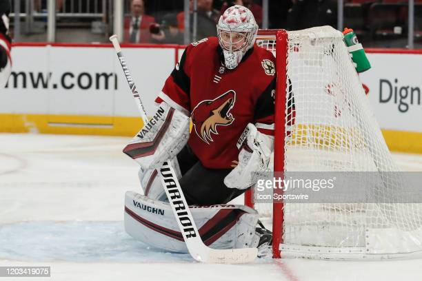 Arizona Coyotes goaltender Darcy Kuemper watches the puck during the NHL hockey game between the Florida Panthers and the Arizona Coyotes on February...