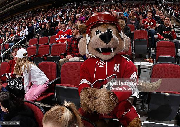 Arizona Coyotes mascot 'Howler' during the NHL game against the St Louis Blues at Gila River Arena on January 6 2015 in Glendale Arizona The Blues...