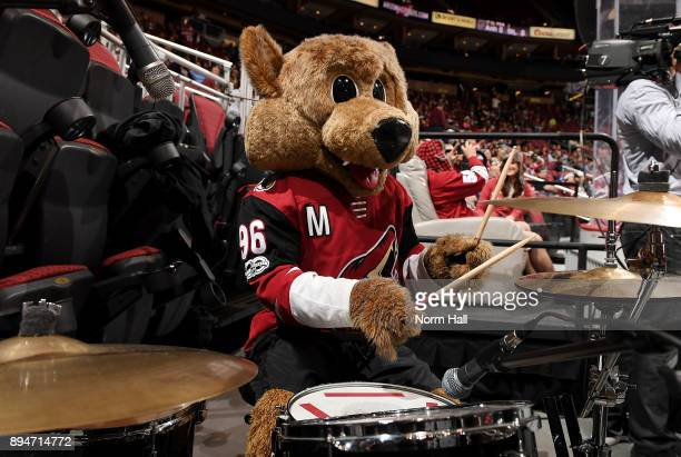 Arizona Coyotes mascot Howler plays the drums prior to the opening puck drop against the Tampa Bay Lightning at Gila River Arena on December 14 2017...