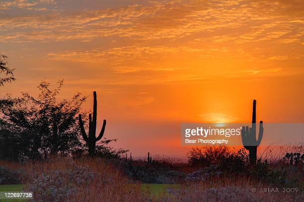 arizona desert sunrise - foothills stock pictures, royalty-free photos & images