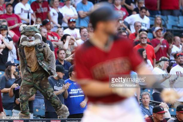 Arizona Diamondbacks mascot 'D Baxter the Bobcat' walks on the dugout as Paul Goldschmidt of the Arizona Diamondbacks bats against the Colorado...