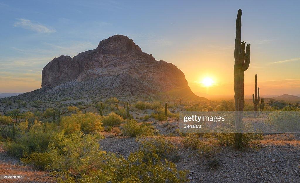 USA, Arizona, Eagletail Mountains Wilderness, Springtime Sunrise in Desert : Stock Photo