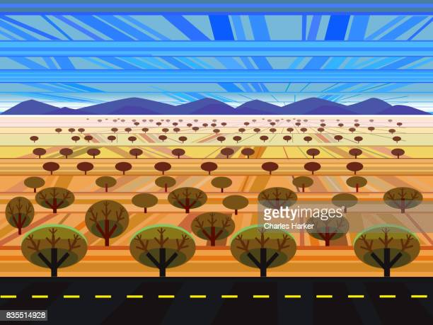 Arizona geometric style landscape illustration