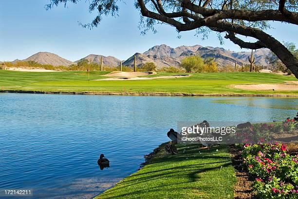 アリゾナのゴルフ