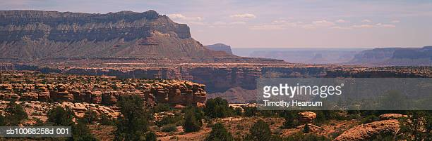 usa, arizona, grand canyon national park, north rim. mesas and canyon in background. - timothy hearsum stock pictures, royalty-free photos & images