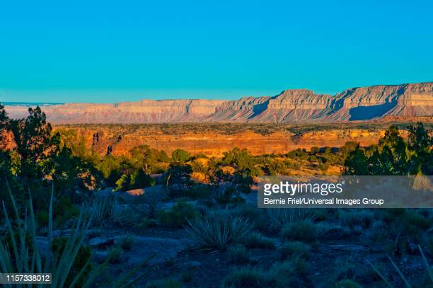 Arizona, Grand Canyon National Park, Tuweep Area, Toroweap Overlook Campground