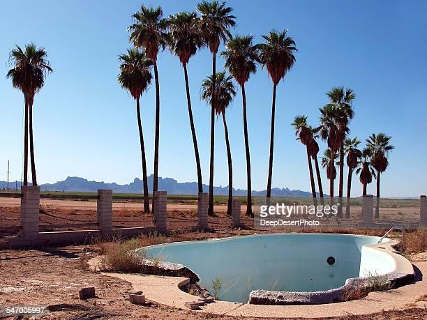 USA, Arizona, Harquahala Valley, Empty abandoned swimming pool with palm trees on background