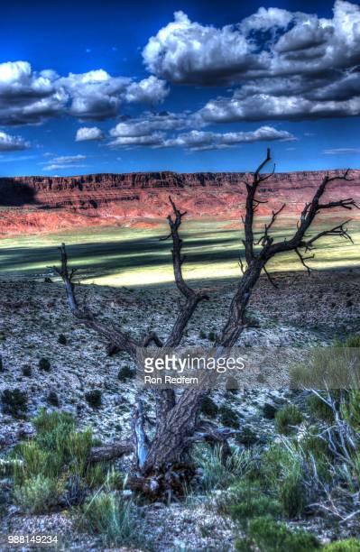 Arizona Lanscape