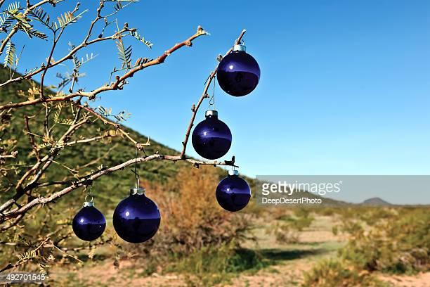 usa, arizona, maricopa county, arlington, blue christmas tree ornaments - arizona christmas stock pictures, royalty-free photos & images