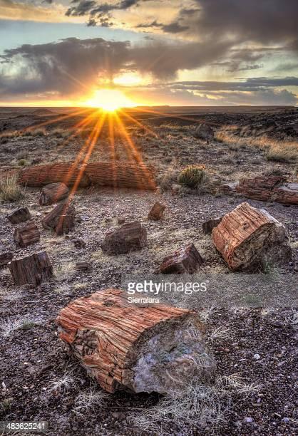 USA, Arizona, Petrified Forest National Park, Sunset in Petrified Forest