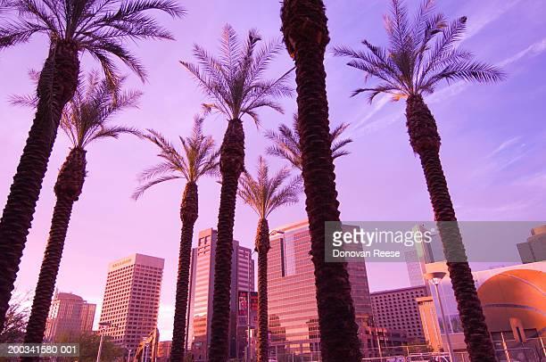 USA, Arizona, Phoenix, downtown skyline