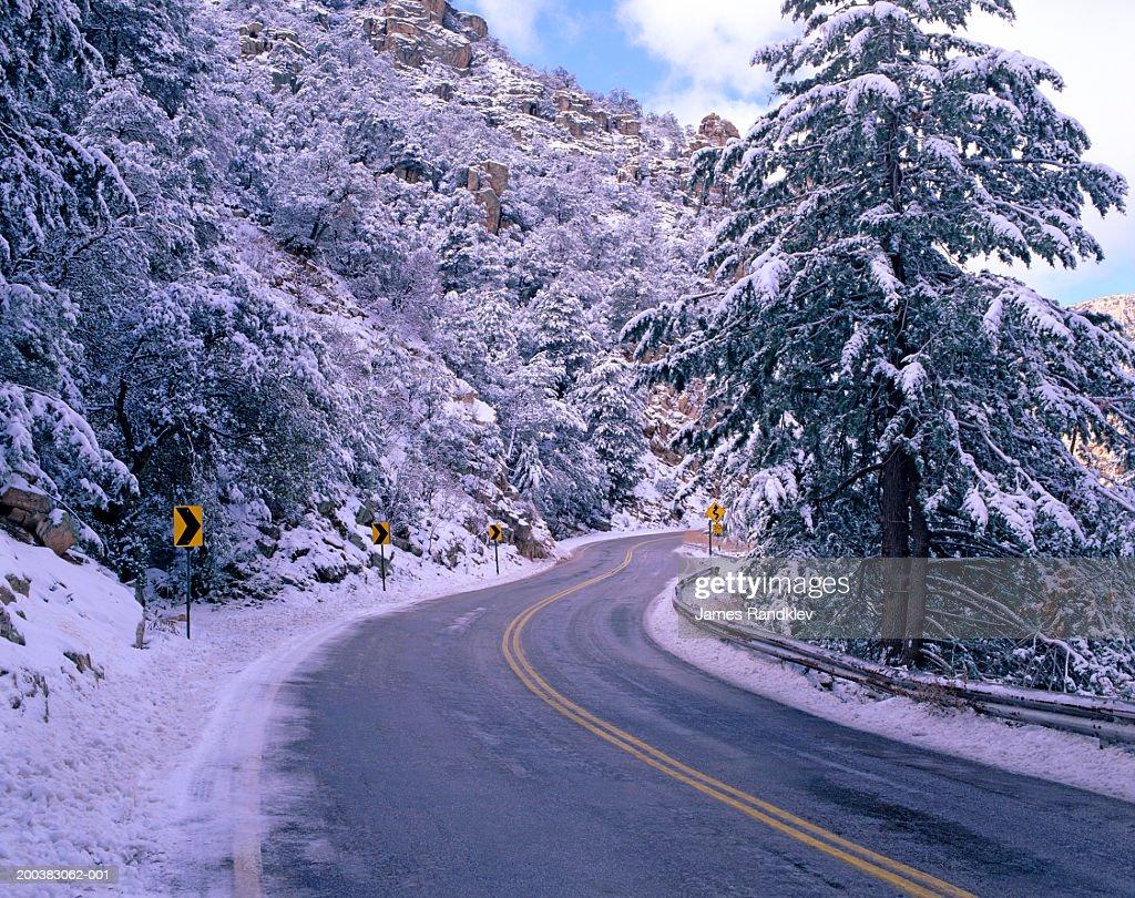 Mt Lemmon Special Events 2020.Usa Arizona Santa Catalina Mountains Mt Lemmon Highway And