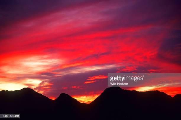 Arizona sunset with altostratus clouds over Tucson Mountains Sonoran Desert Saguaro National Park Tucson Arizona USA