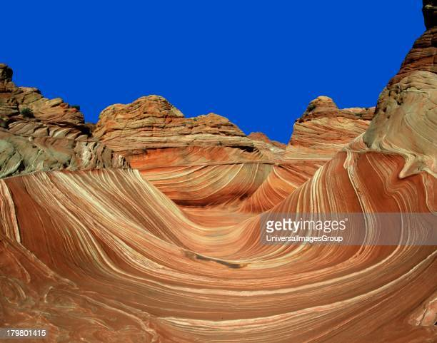 Arizona The Wave in Upper Paria Canyon