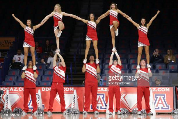 Arizona Wildcats cheerleaders during the a college women's basketball game between Oregon Ducks and Arizona Wildcats on February 25 at McKale Center...