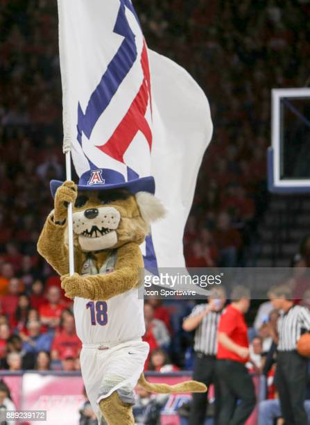 Arizona Wildcats mascot Wilbur T Wildcat runs with a flag during a college basketball game between Alabama Crimson Tide and Arizona Wildcats on...