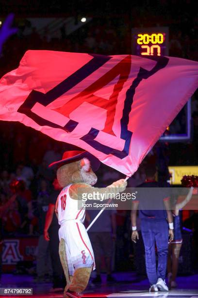 Arizona Wildcats mascot Wilbur T Wildcat waves a flag with the Arizona Wildcats logo before the a college basketball game between UMBC Retrievers and...