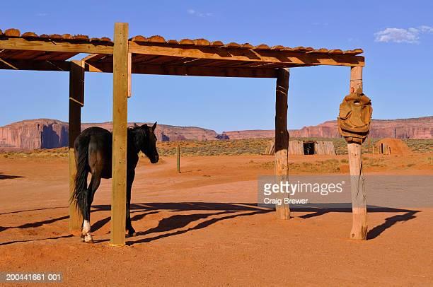 USA, Arizona/Utah border, Monument Valley, horse under wooden shelter
