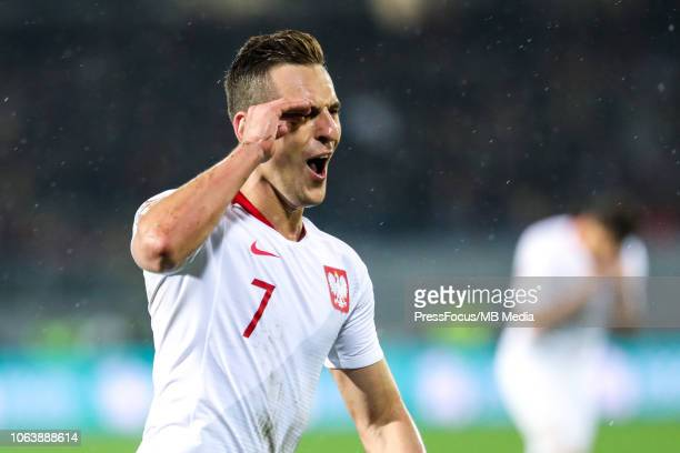 Arkadiusz Milik of Poland celebrates scoring a goal during the UEFA Nations League A group three match between Portugal and Poland at on November 20...