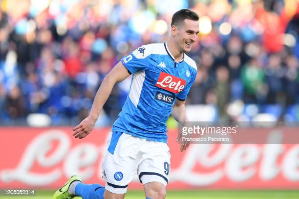 Arkadiusz Milik of SSC Napoli celebrates after scoring the 1-1 goal during the Serie A match between SSC Napoli and US Lecce at Stadio San Paolo on...