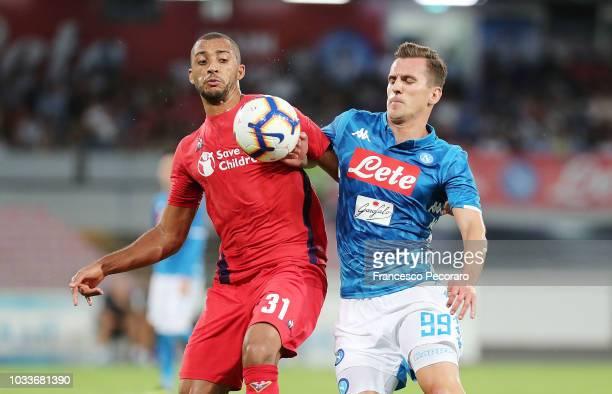 Arkadiusz Milik of SSC Napoli vies Vitor Hugo of ACF Fiorentina during the serie A match between SSC Napoli and ACF Fiorentina at Stadio San Paolo on...
