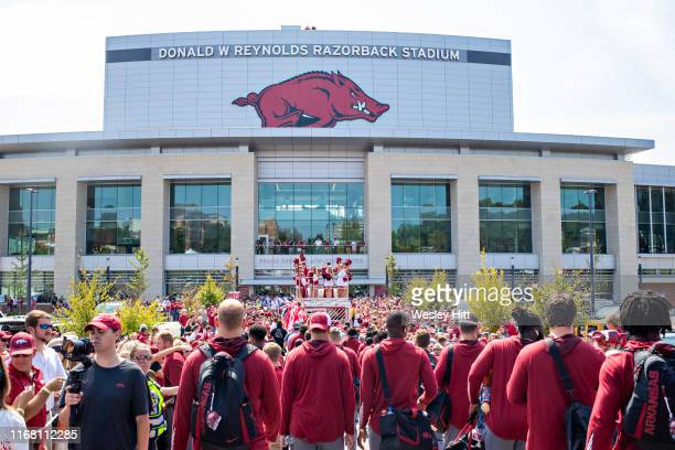 Arkansas Razorback football team walks to the stadium and greets fans before a game against Colorado State Rams at Razorback Stadium on September 14,...