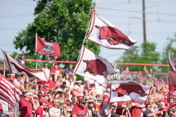 Arkansas Razorbacks fans wave flags after a homerun during Game 3 of the NCAA Super Regional baseball game between the Arkansas Razorbacks and Ole...