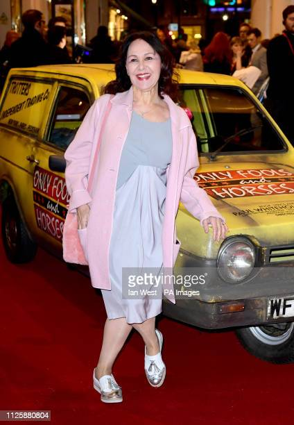 Arlene Phillips attending the Only Fools and Horses the Musical opening night at the Theatre Royal Haymarket Tuesday February 19 2019 Photo credit...