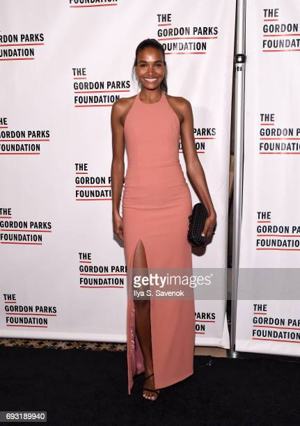 Arlenis Sosa attends the 2017 Gordon Parks Foundation Awards Gala at Cipriani 42nd Street on June 6 2017 in New York City