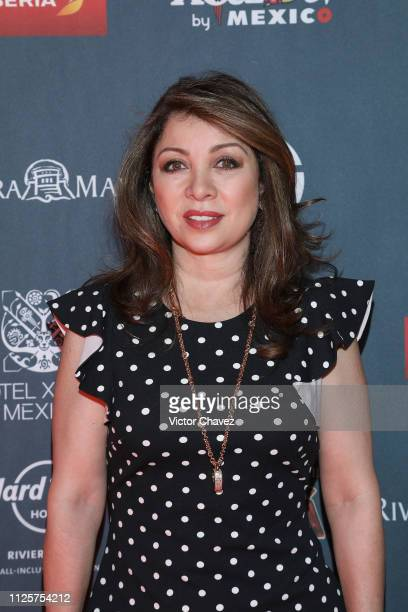 Arlette Pacheco attends a red carpet for the shortlist presentation of the Premios Platino at Cineteca Nacional on February 18 2019 in Mexico City...