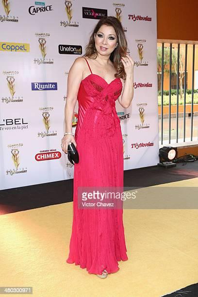 Arlette Pacheco attends the Premios Tv y Novelas 2014 at Televisa Santa Fe on March 23 2014 in Mexico City Mexico
