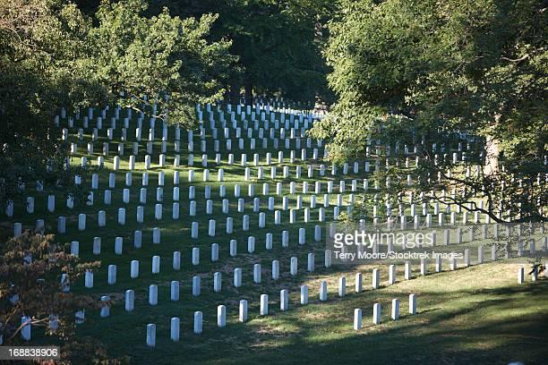 arlington national cemetery, arlington, virginia, usa. - größere sehenswürdigkeit stock-fotos und bilder