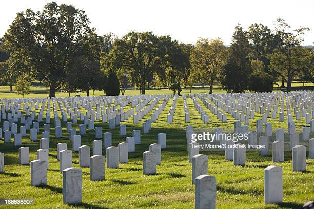 arlington national cemetery, arlington, virginia, usa. - national landmark stock pictures, royalty-free photos & images