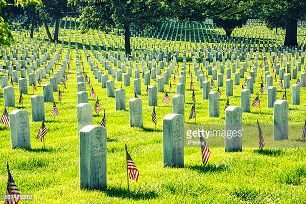 Arlington National Cemetery Memorial Day Flags