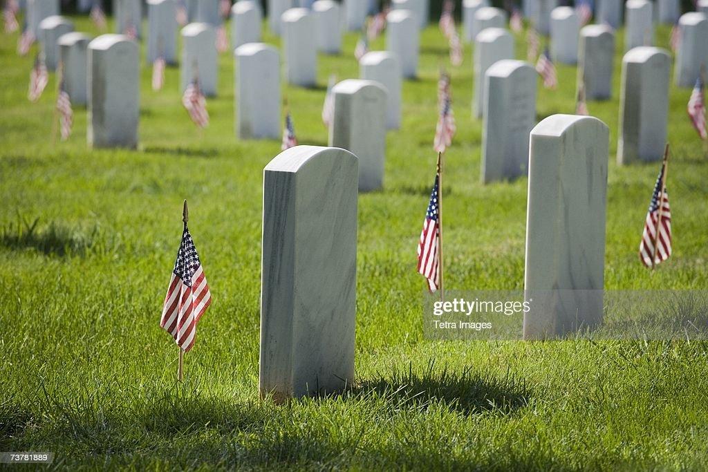 Arlington National Cemetery Washington DC USA : Stock Photo