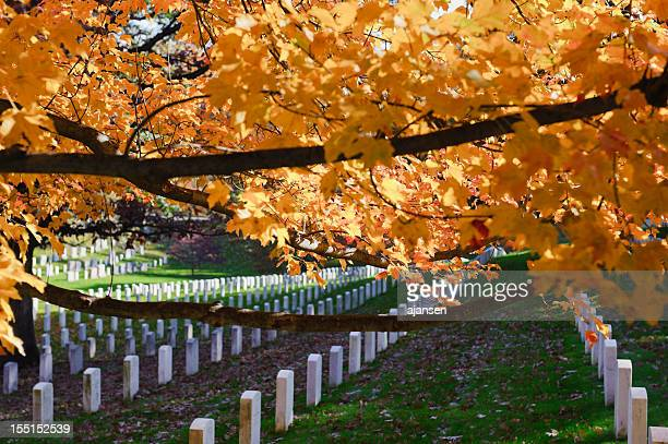 Arlington National Cemetery with colorful trees