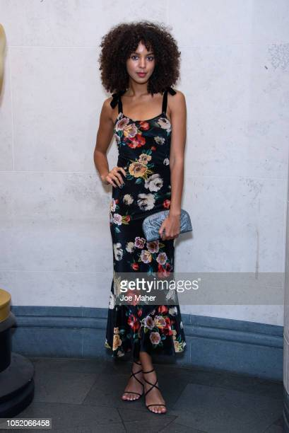 Arlissa attends The Academy of Motion Picture Arts and Sciences new members reception at The National Gallery on October 13 2018 in London England