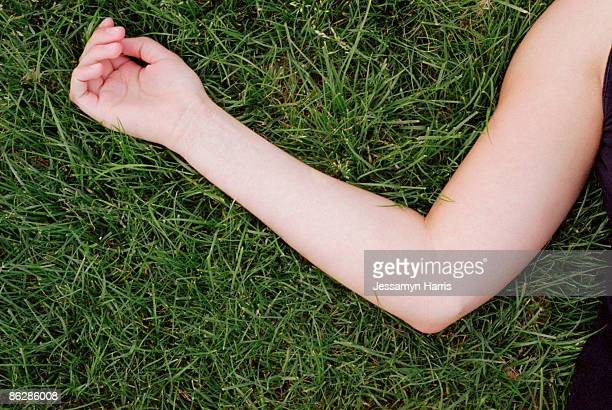 arm on grass - jessamyn harris stock pictures, royalty-free photos & images