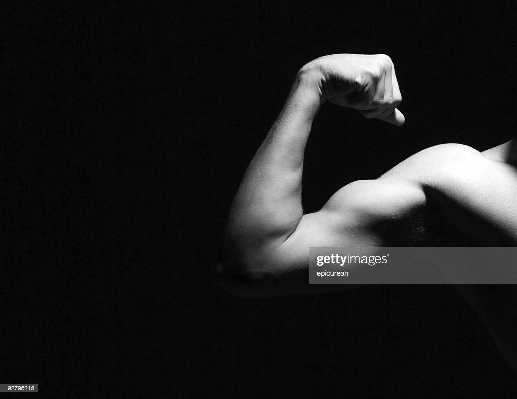 Arm : Stock Photo